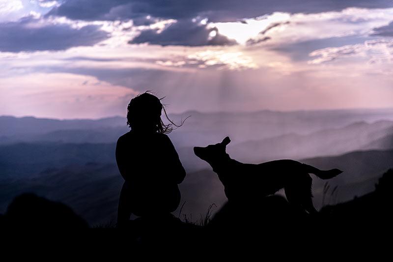 De gelaagdheid geeft deze silhouetfoto veel diepte